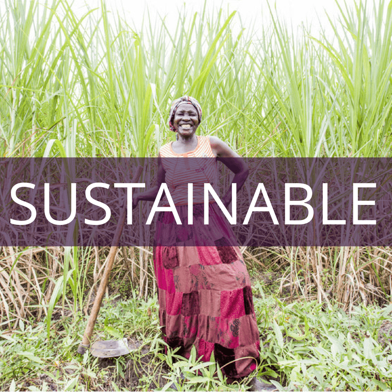 Opportunity International is sustainable.