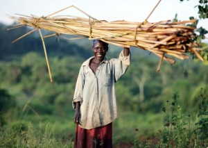 Opportunity Uganda clients like Betty Aute have access to electricity because of the new solar panel loan product.