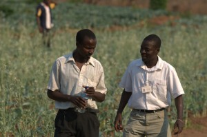 Mozambican farmer Lucas Chingore (left) consults with his loan officer Ricardo Domingos.