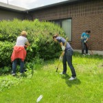 Weeding on the Grace Church grounds.